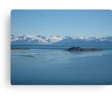 lake argentina Canvas Print