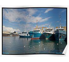 Boat Harbour in Fremantle Poster