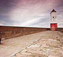 Berwick Lighthouse by Brian Kerr