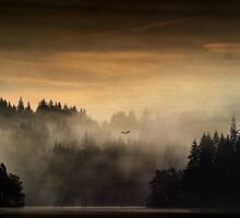 Land of the Raptors 2... Loch Ard, Trossachs by David Mould