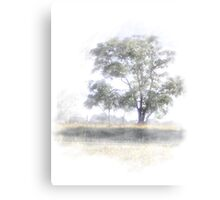 Quiet Pastures Canvas Print