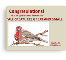 New Feature banner Challenge - 'All Creatures Great & Small' Canvas Print