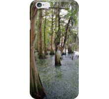 Cypress Trees iPhone Case/Skin