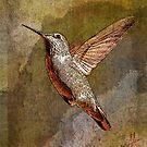 In Flight by Pat Moore