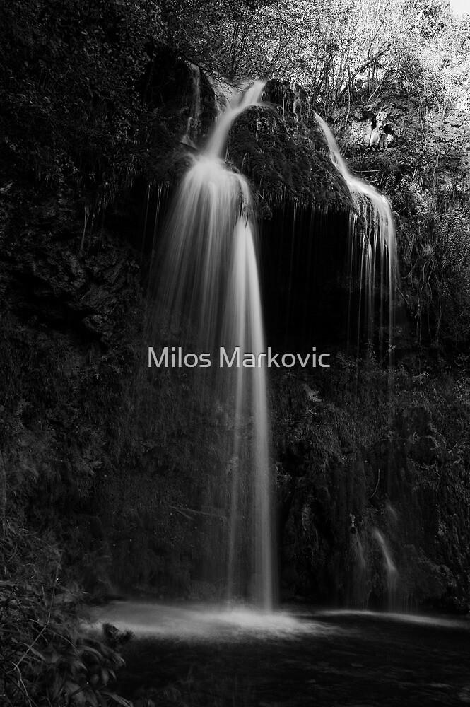Lisina by Milos Markovic