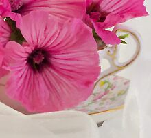Lavatera Flowers In The Tea Cup by Sandra Foster