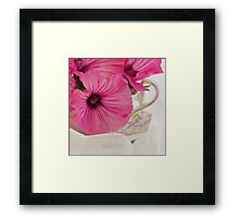 Lavatera Flowers In The Tea Cup Framed Print