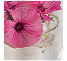 Lavatera Flowers In The Tea Cup Poster