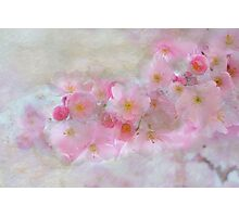 Dreams in Pink Photographic Print