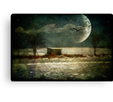 Moonstruck Canvas Print