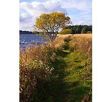 Cameron Loch-side Walk Photographic Print