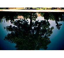 Reflection Pool Photographic Print