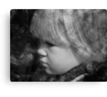 Face of an Angel Canvas Print