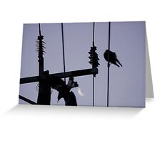 magpie moon Greeting Card