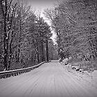 Following Tracks by David Dehner