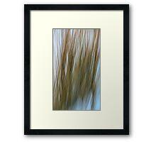 Prairie Grass In Snow Framed Print