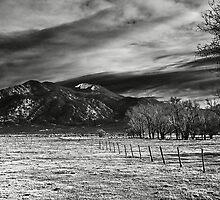 Fence Line by Bob  Hallam