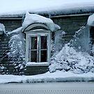 Freezing house by Bluesrose