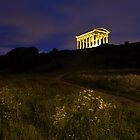Penshaw Monument at Night by Paul Berry