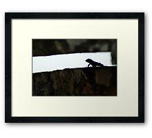 Crevasse - Brazil Framed Print