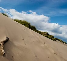 Dune (colour) by Paul Berry