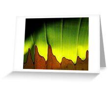 a single leaf Greeting Card