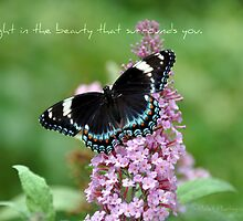 Delight in the beauty that surrounds you. 2108 views 02.03.13 by smalletphotos