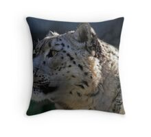 Trapped Emotion Throw Pillow