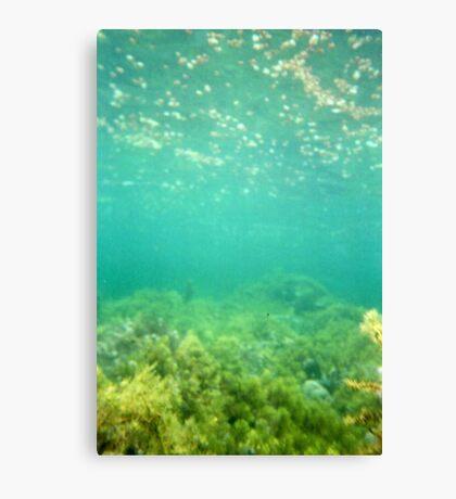 Marino Rocks Reef Canvas Print