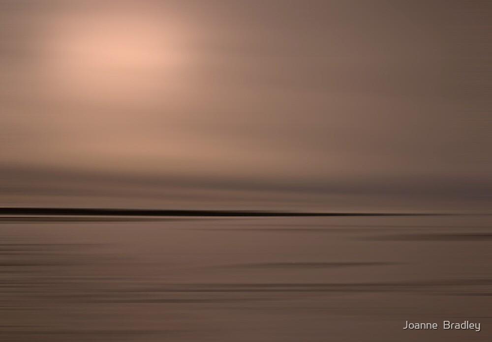 Winter Rose by Joanne  Bradley