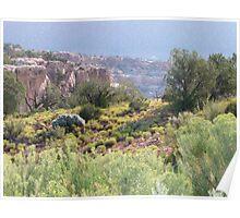 Lush desert scene Poster