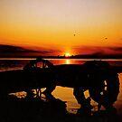 Sunset on Lake Wahtoponak by Larry Trupp