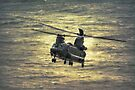 Boeing Chinook HC2 - ZH894 by Nigel Bangert