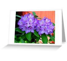 Azalea Flowers Beside The Red Covered Bridge Greeting Card