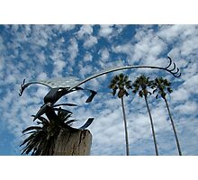Bird Sculpture,Bermagui,Australia 2015 Photographic Print