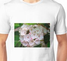 Pennsylvania Mountain Laurel - Kalmia latifolia (as-is)  Unisex T-Shirt