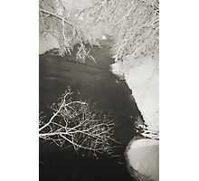 Winter Scene #16 Photographic Print