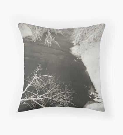 Winter Scene #16 Throw Pillow