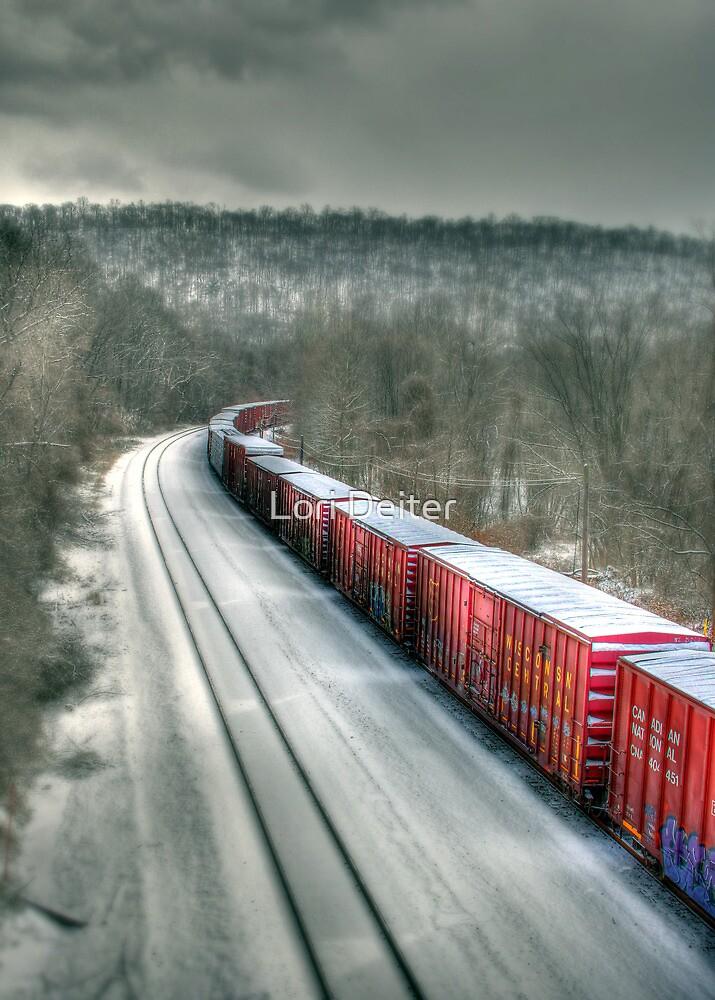 The Winter Run by Lori Deiter