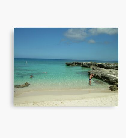 Slice of Paradise  Canvas Print