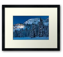 Silent Trees Framed Print