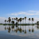 Kerala backwaters by thesiracusas