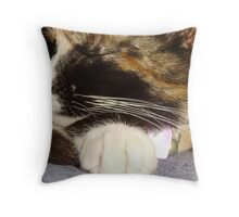Sprinkles Whiskers Throw Pillow