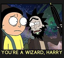 You're a Wizard, Harry by siler