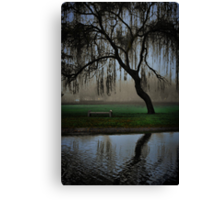 Hanging in the fog Canvas Print