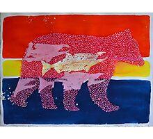 Salmon Bear II Photographic Print