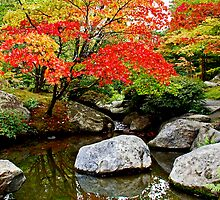 Japanese Gardens - Seattle, WA by Bob Shupe