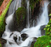 Quiet Falls by Bob Shupe