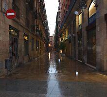 Rainy Day on La Rambla by vmcdonald