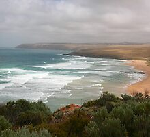 Parsons Beach, S. A. by Gail Mew